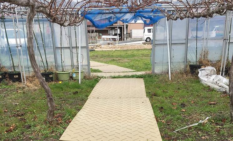 ビニールハウス内にプラスチック敷板を敷いて足場が安定するのと台車走行スムーズに