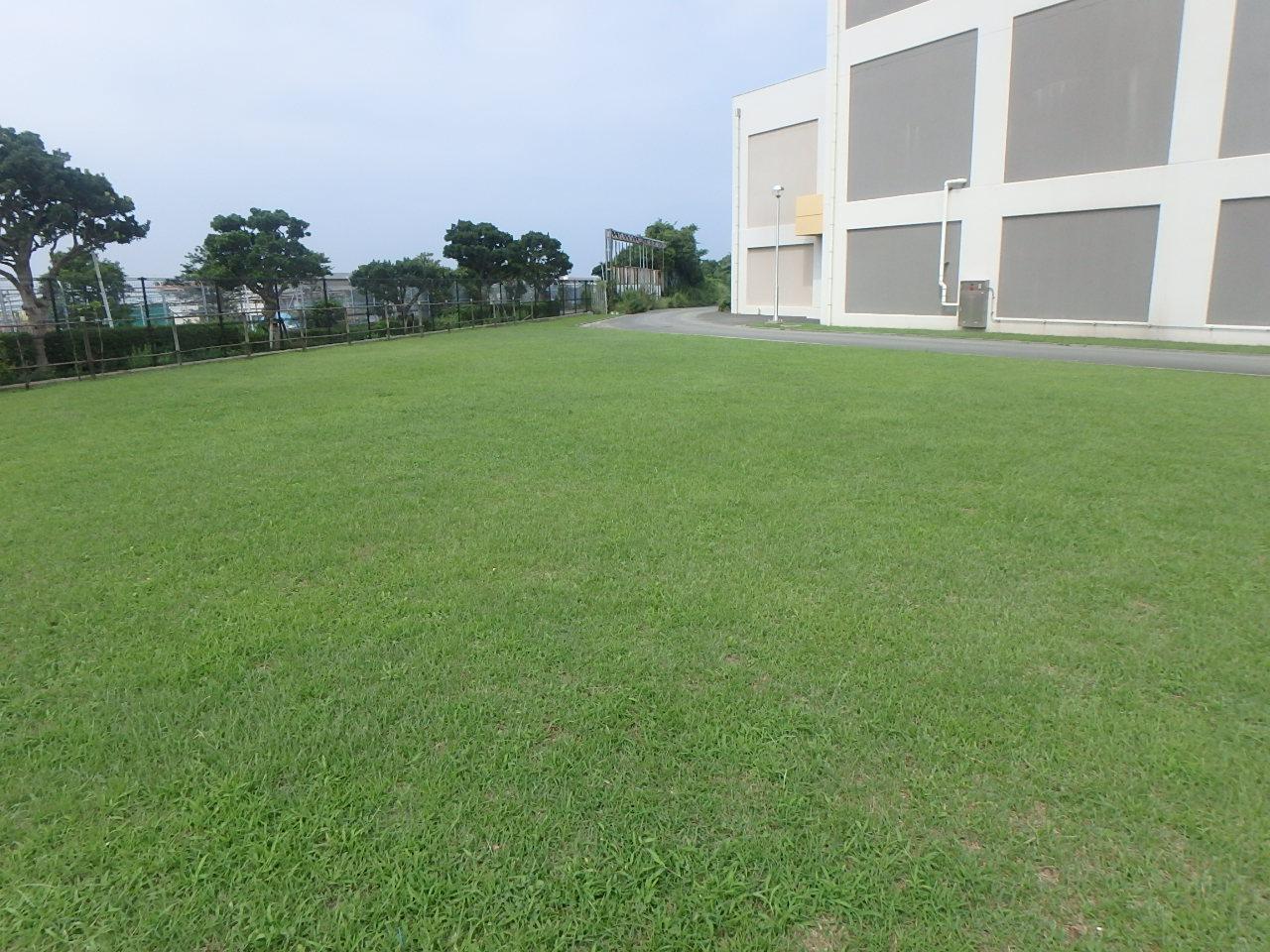 敷地内工事は駐車場が限られる。その場合は、芝生が駐車スぺ―スになってしまう