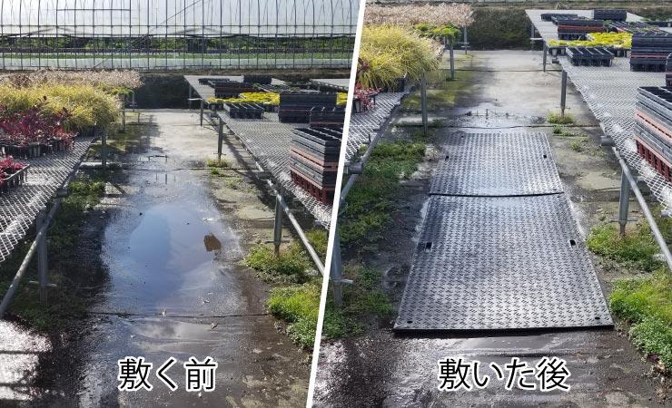 育苗農家は水たまりがいっぱい!一輪車や台車走行するために樹脂敷板を利用してみた