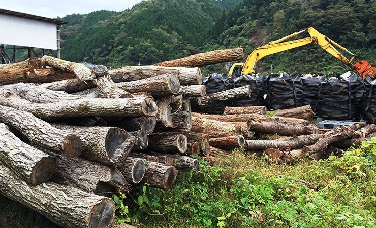 間伐材置き場の地面は柔らかくぬかるみやすく、地面からの湿気で木材が乾かない